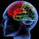 Stress et maladie d'Alzheimer…