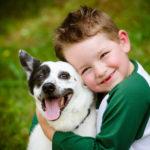 Le chien : véritable anti-stress pour les enfants
