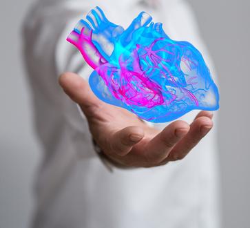 Stress des attentats et accidents cardio-vasculaires