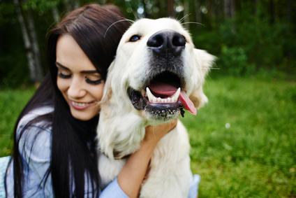 Pour diminuer le stress : les animaux de compagnie