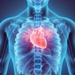 Stress et risques cardiovasculaires