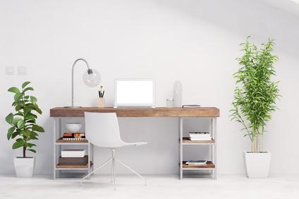 Les plantes au bureau contre le stress au travail