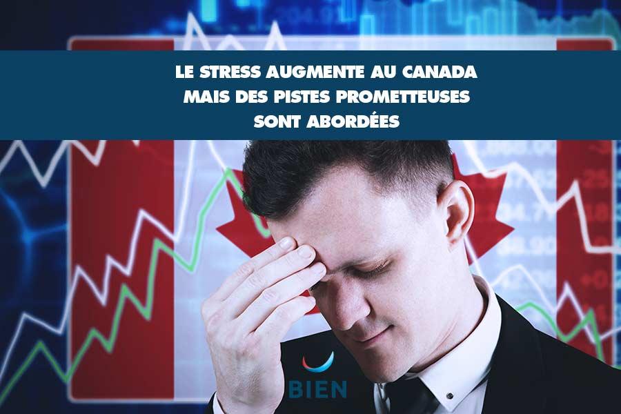 Comment réduire le stress au Canada ? Des pistes sont abordées dans cette étude