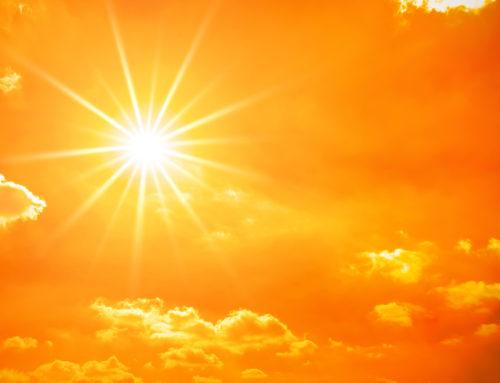 Attention au stress thermique…